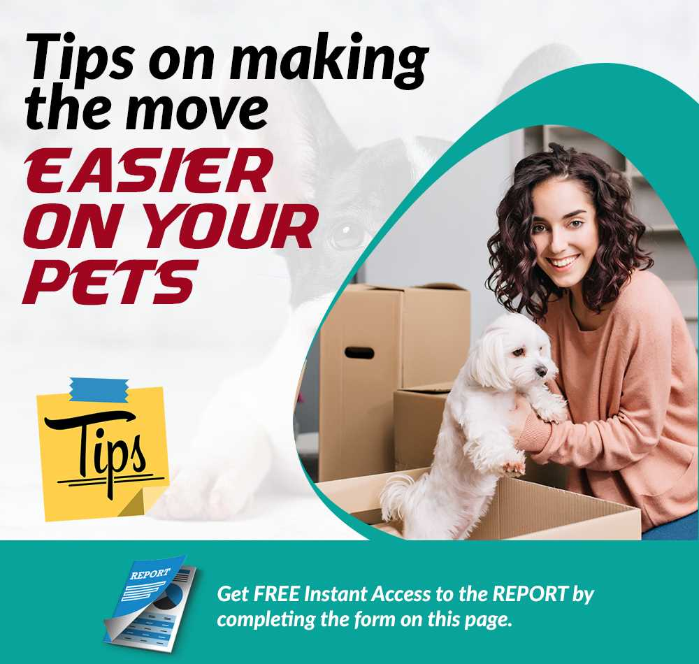 Tips on making the move easier on your pets