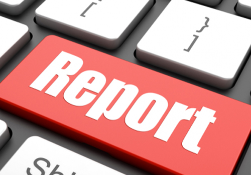 In this report